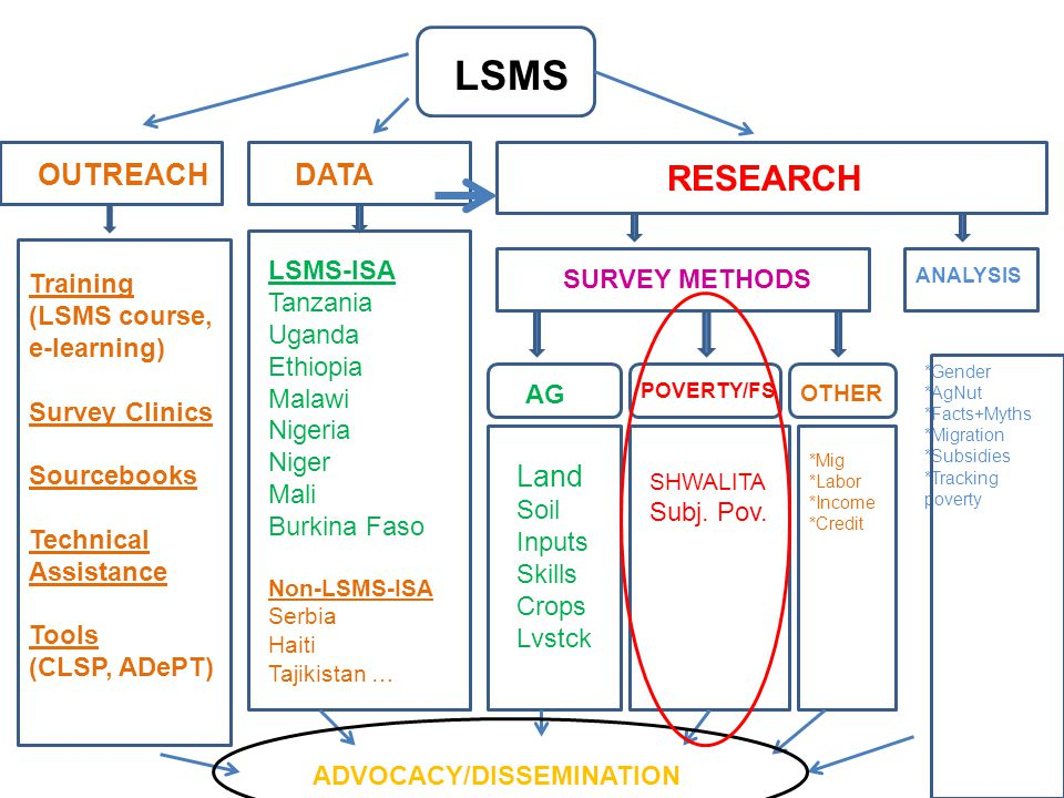 DATA RESEARCH AG POVERTY/FS OTHER SURVEY METHODS ANALYSIS *Gender *AgNut *Facts+Myths *Migration *Subsidies *Tracking poverty LSMS-ISA Tanzania Uganda Ethiopia Malawi Nigeria Niger Mali Burkina Faso Non-LSMS-ISA Serbia Haiti Tajikistan … ADVOCACY/DISSEMINATION LSMS OUTREACH Training (LSMS course, e-learning) Survey Clinics Sourcebooks Technical Assistance Tools (CLSP, ADePT) Land Soil Inputs Skills Crops Lvstck *Mig *Labor *Income *Credit SHWALITA Subj.