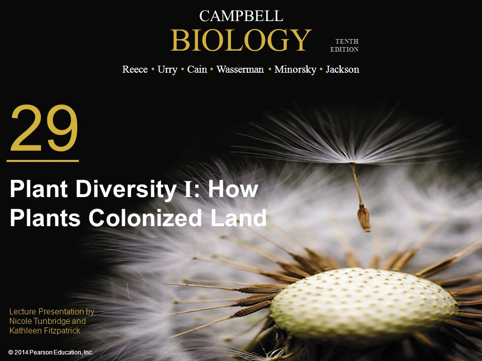 CAMPBELL BIOLOGY Reece Urry Cain Wasserman Minorsky Jackson © 2014 Pearson Education, Inc. TENTH EDITION 29 Plant Diversity I : How Plants Colonized L