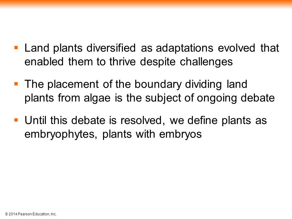 © 2014 Pearson Education, Inc.  Land plants diversified as adaptations evolved that enabled them to thrive despite challenges  The placement of the