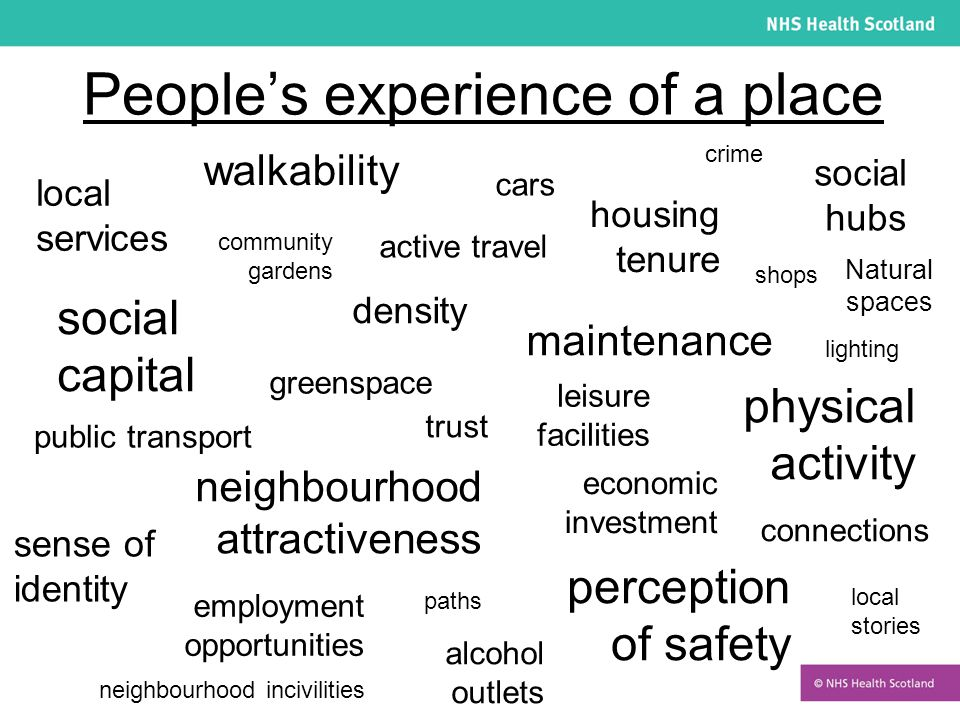 People's experience of a place lighting social hubs physical activity greenspace perception of safety housing tenure active travel shops alcohol outlets social capital cars local services employment opportunities walkability connections community gardens public transport leisure facilities crime density sense of identity local stories maintenance paths trust economic investment neighbourhood incivilities neighbourhood attractiveness Natural spaces