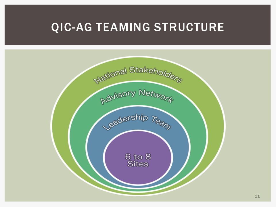 11 QIC-AG TEAMING STRUCTURE