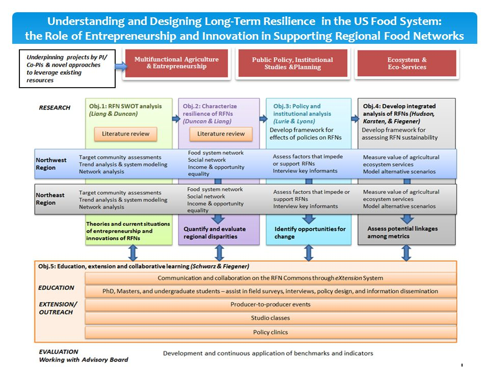 Understanding and Designing Long-Term Resilience in the US Food System: the Role of Entrepreneurship and Innovation in Supporting Regional Food Networ