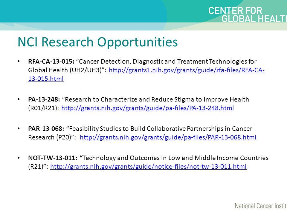 Center for Global Health Short-Term Scientist Exchange Program.
