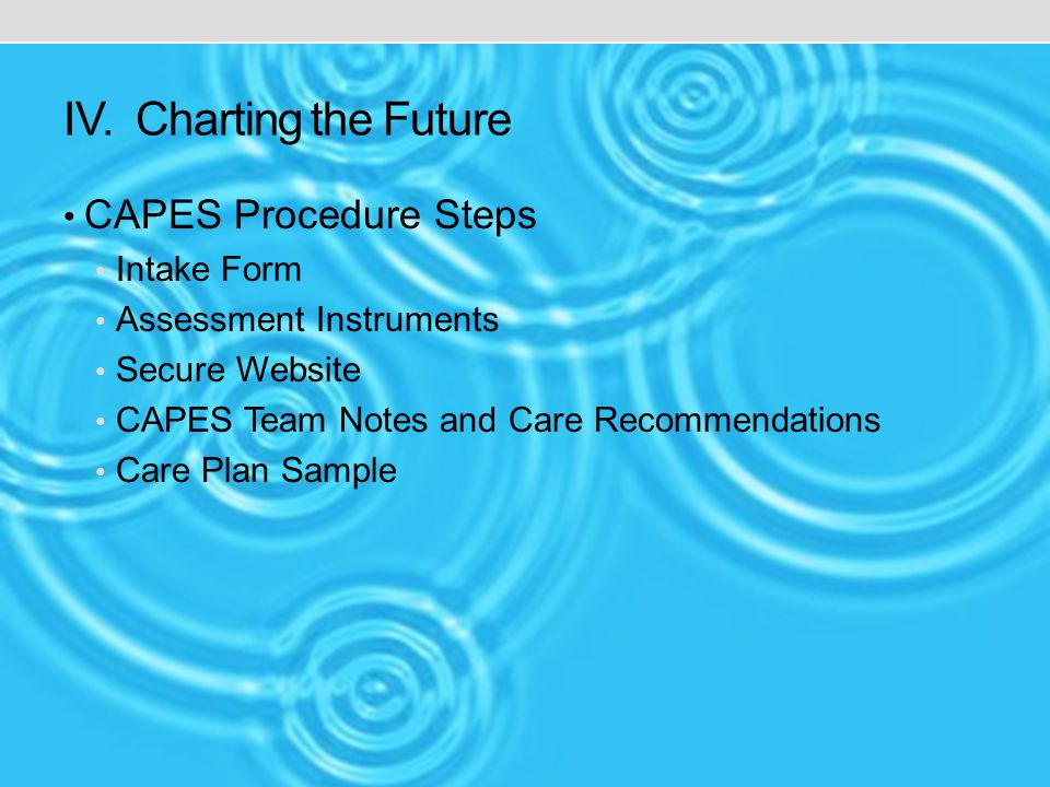 IV. Charting the Future CAPES Procedure Steps Intake Form Assessment Instruments Secure Website CAPES Team Notes and Care Recommendations Care Plan Sa