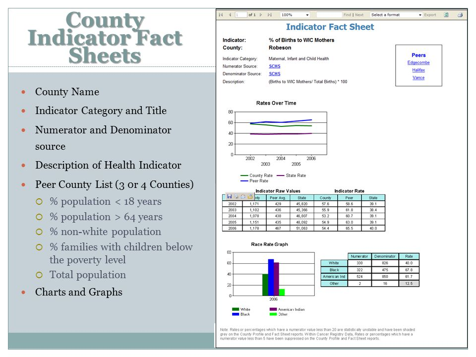 County Indicator Fact Sheets County Name Indicator Category and Title Numerator and Denominator source Description of Health Indicator Peer County List (3 0r 4 Counties)  % population < 18 years  % population > 64 years  % non-white population  % families with children below the poverty level  Total population Charts and Graphs