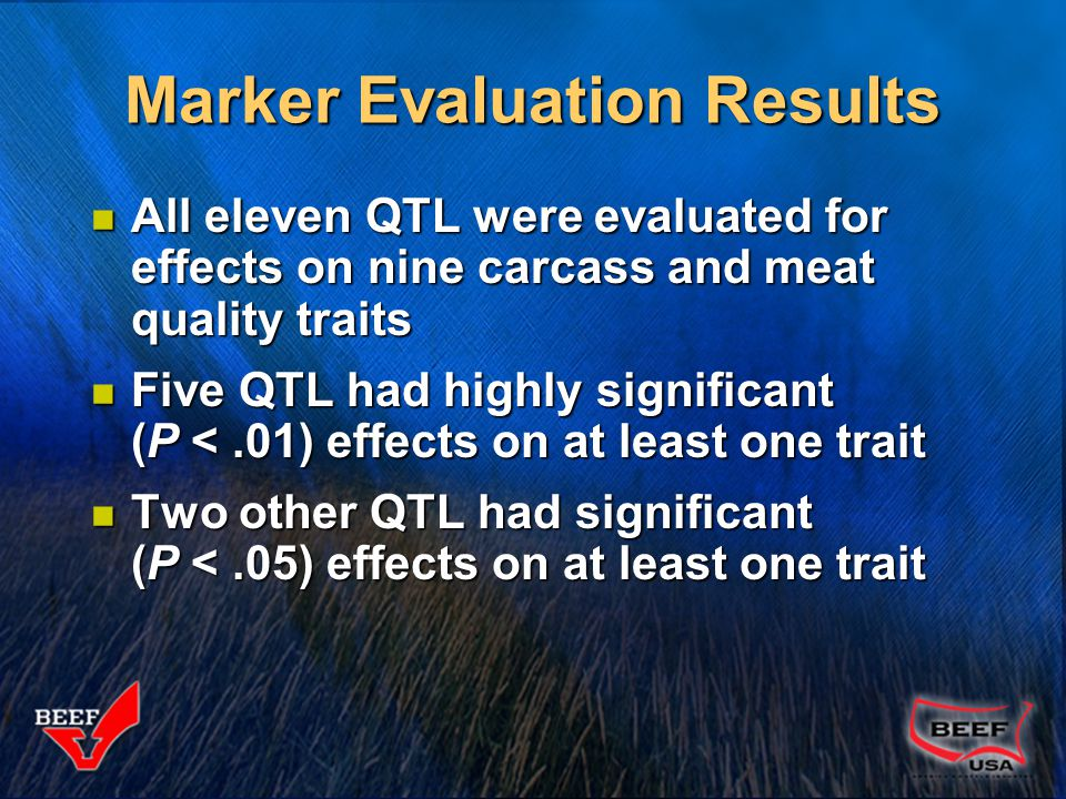 Marker Evaluation Results All eleven QTL were evaluated for effects on nine carcass and meat quality traits All eleven QTL were evaluated for effects