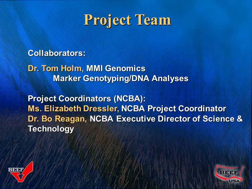 Project Team Collaborators: Dr. Tom Holm, MMI Genomics Marker Genotyping/DNA Analyses Project Coordinators (NCBA): Ms. Elizabeth Dressler, NCBA Projec