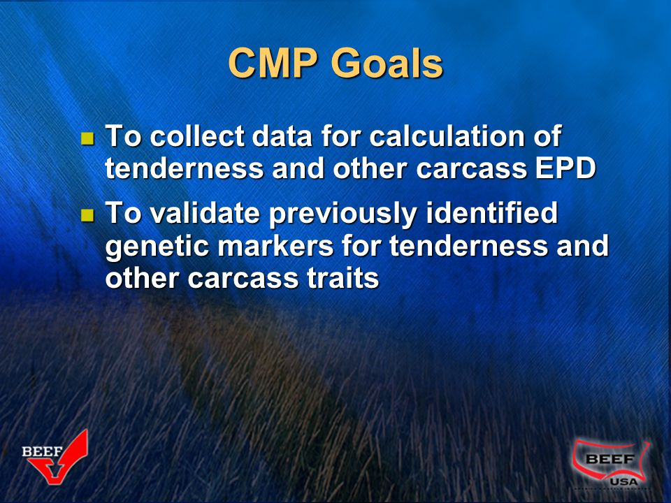 CMP Procedures Project began in 1998, completed in 2004 Project began in 1998, completed in 2004 All US beef breed associations were invited to participate All US beef breed associations were invited to participate Costs in the project were shared by the breed associations and the $1 per head beef checkoff Costs in the project were shared by the breed associations and the $1 per head beef checkoff