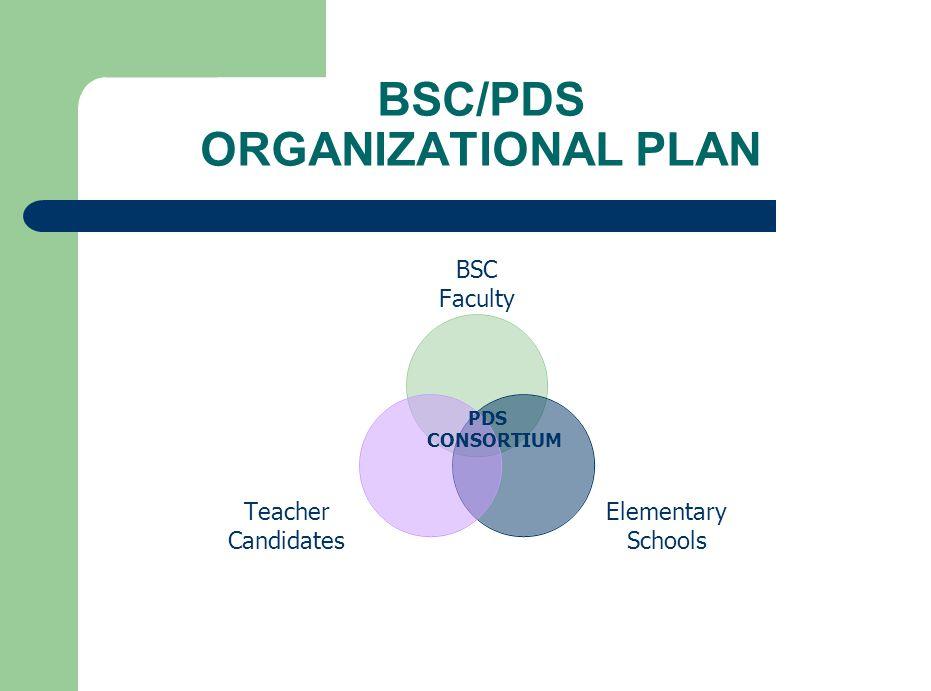 BSC/PDS ORGANIZATIONAL PLAN BSC Faculty Elementary Schools Teacher Candidates PDS CONSORTIUM