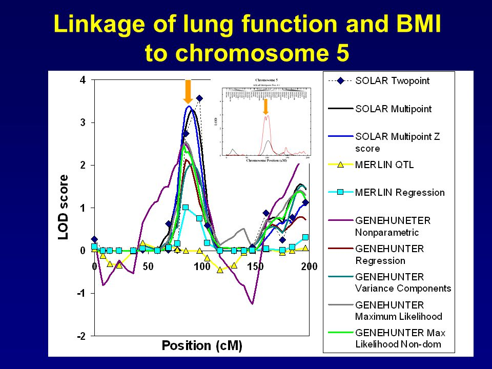 Linkage of lung function and BMI to chromosome 5