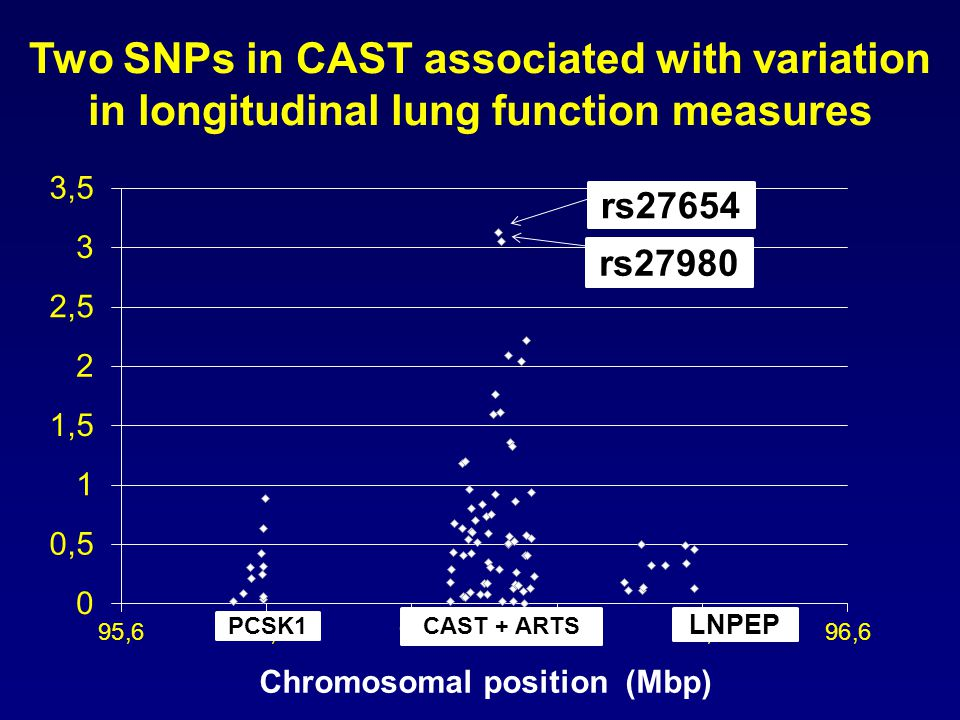 Haplotype: Third SNP (rs10515246) is not in linkage disequilibrium with two associated SNPs