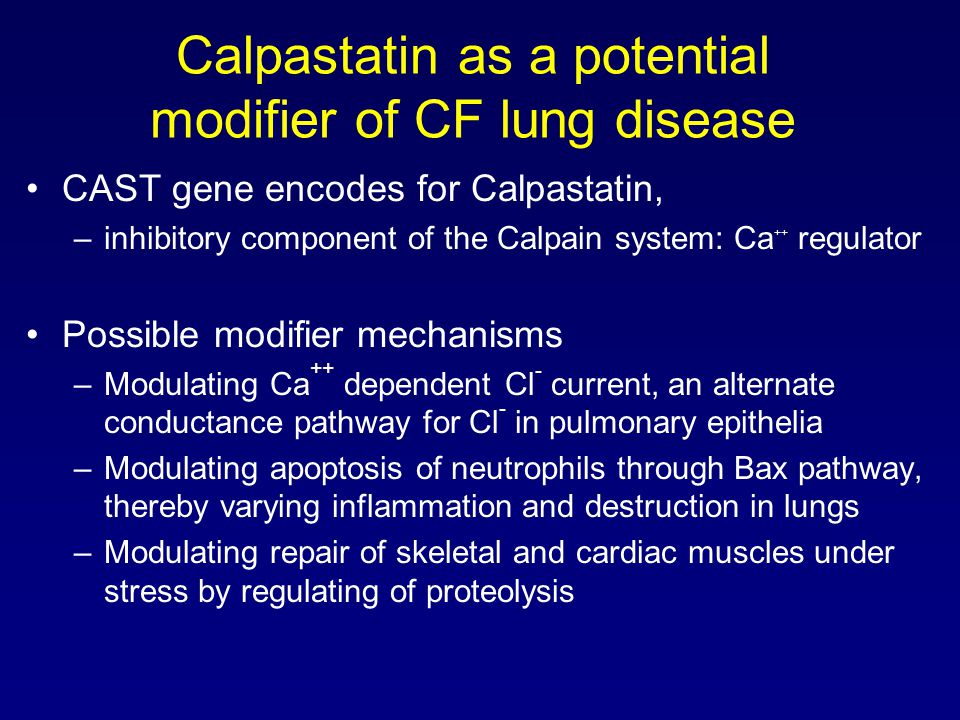 Calpastatin as a potential modifier of CF lung disease CAST gene encodes for Calpastatin, –inhibitory component of the Calpain system: Ca ++ regulator Possible modifier mechanisms –Modulating Ca ++ dependent Cl - current, an alternate conductance pathway for Cl - in pulmonary epithelia –Modulating apoptosis of neutrophils through Bax pathway, thereby varying inflammation and destruction in lungs –Modulating repair of skeletal and cardiac muscles under stress by regulating of proteolysis