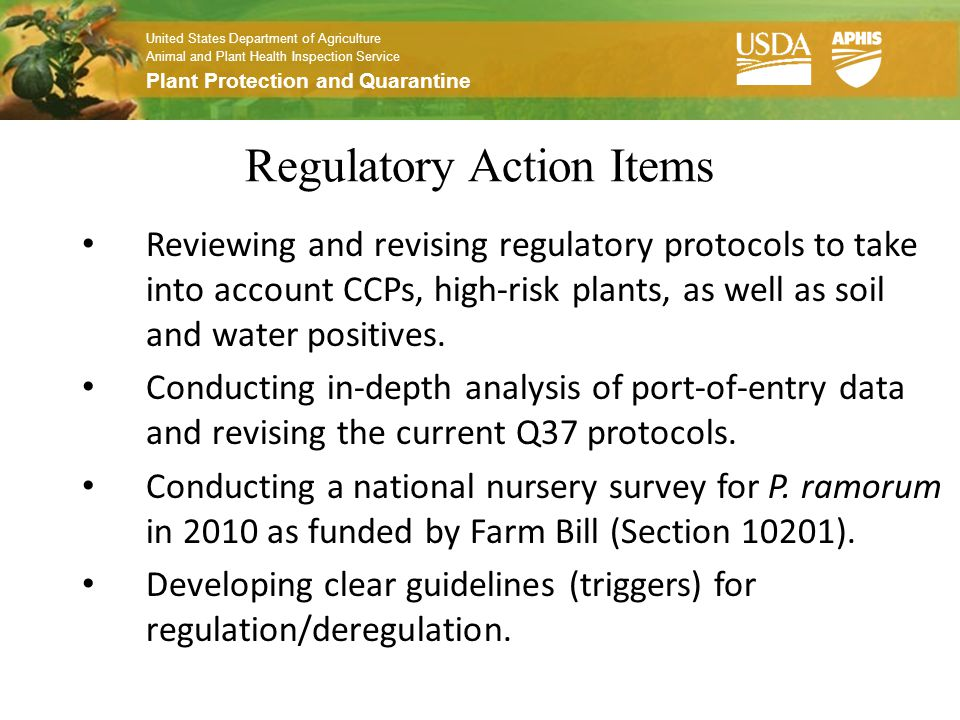 United States Department of Agriculture Animal and Plant Health Inspection Service Plant Protection and Quarantine Regulatory Action Items Reviewing and revising regulatory protocols to take into account CCPs, high-risk plants, as well as soil and water positives.