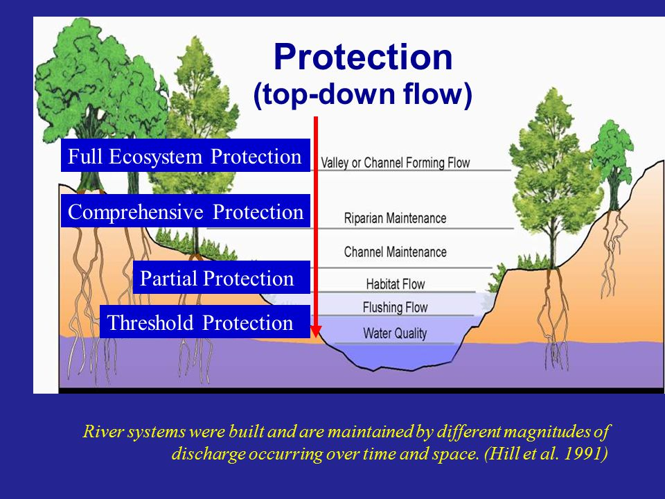 River systems were built and are maintained by different magnitudes of discharge occurring over time and space.
