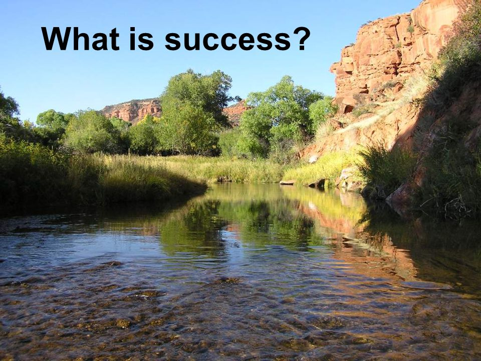 Failure ? Success?