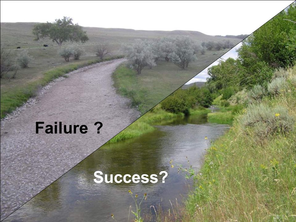 Success as a level of flow protection Full ecosystem protection Comprehensive ecologically based management Partial ecologically based management Threshold level protection No formal flow protection