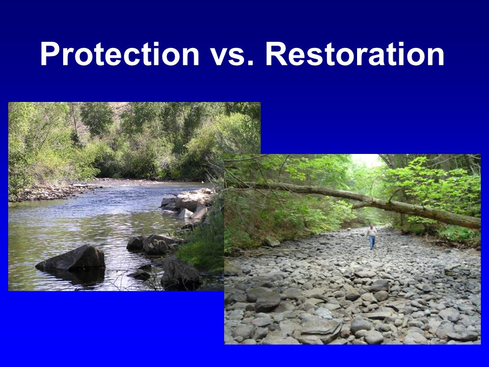 Protection vs. Restoration
