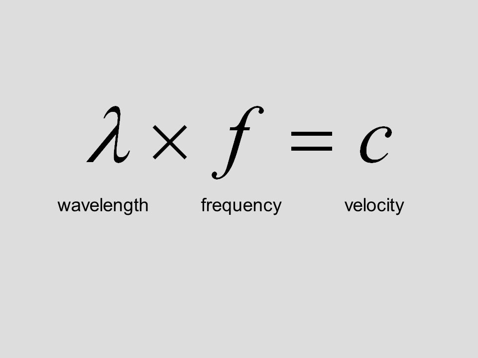 wavelengthfrequencyvelocity