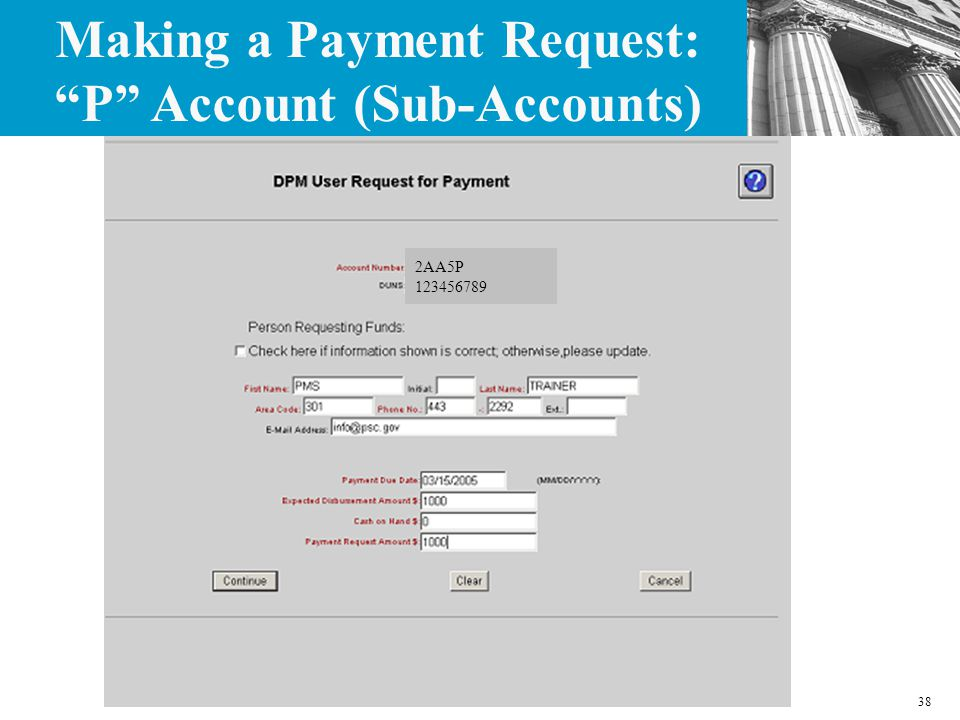 38 2AA5P 123456789 Making a Payment Request: P Account (Sub-Accounts)