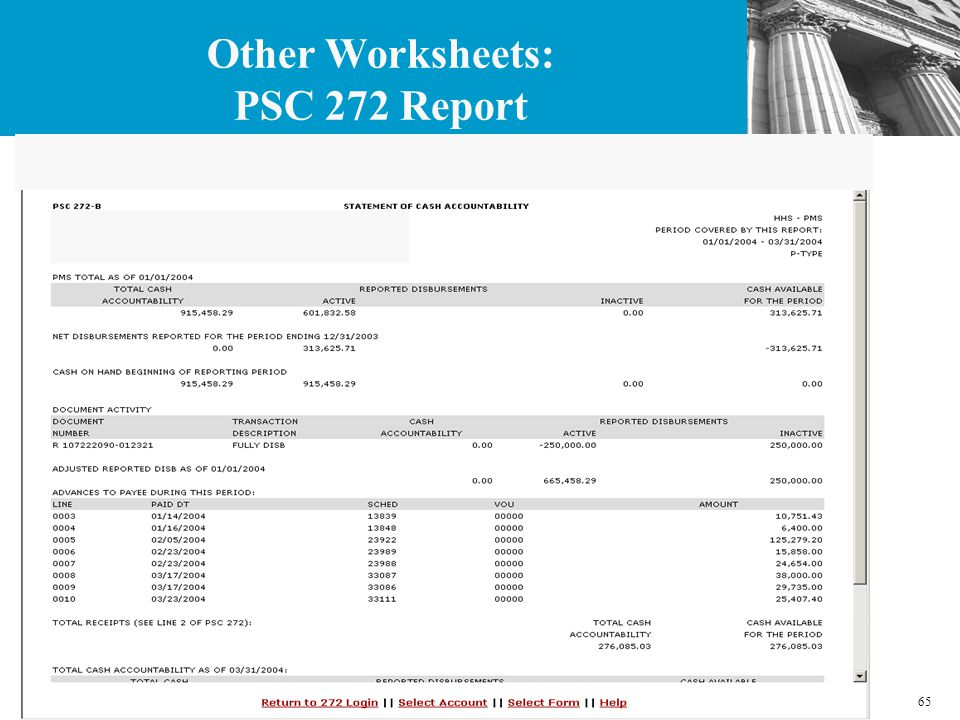 65 Other Worksheets: PSC 272 Report