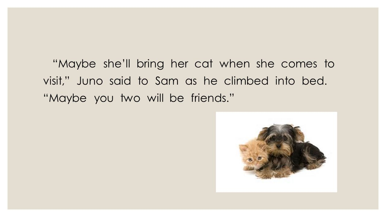Maybe she'll bring her cat when she comes to visit, Juno said to Sam as he climbed into bed.