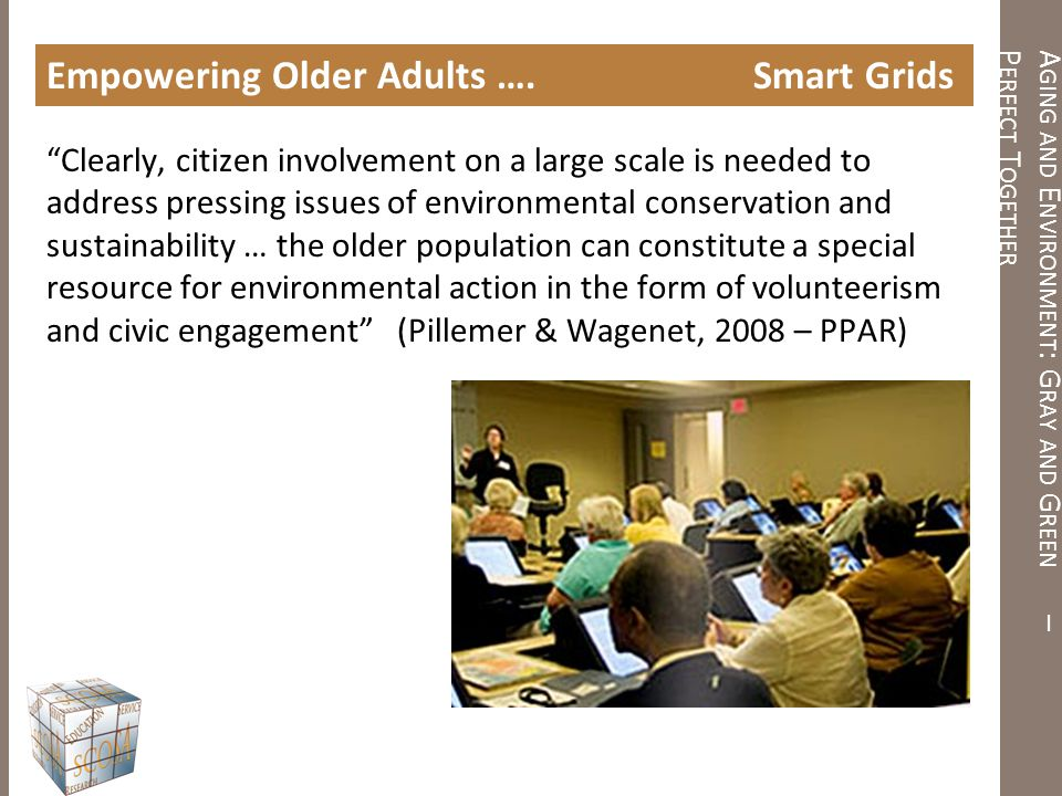 "A GING AND E NVIRONMENT : G RAY AND G REEN – P ERFECT T OGETHER Empowering Older Adults …. Smart Grids ""Clearly, citizen involvement on a large scale"