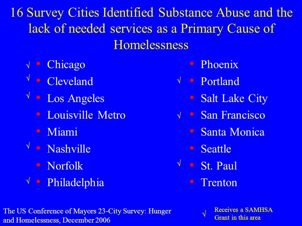 16 Survey Cities Identified Substance Abuse and the lack of needed services as a Primary Cause of Homelessness Chicago Cleveland Los Angeles Louisville Metro Miami Nashville Norfolk Philadelphia Phoenix Portland Salt Lake City San Francisco Santa Monica Seattle St.