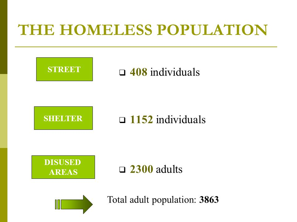 THE HOMELESS POPULATION  408 individuals  1152 individuals  2300 adults STREET SHELTER DISUSED AREAS Total adult population: 3863