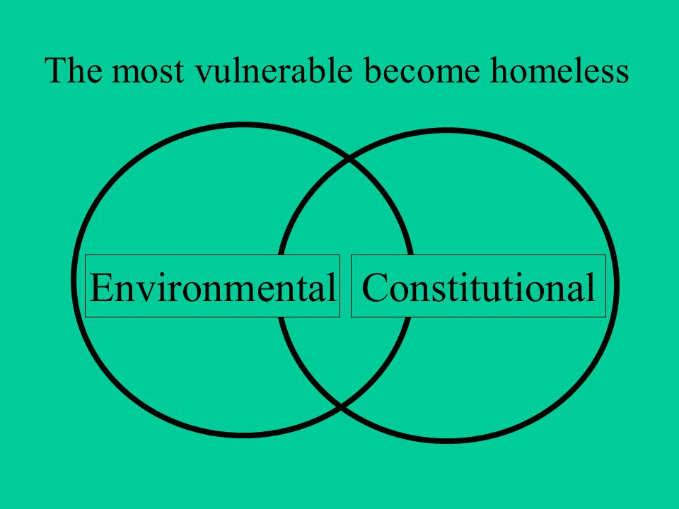 Causes of Homelessness Severe economic instability Immigration Migration from Dust Bowl Grapes of Wrath WWII – homelessness decreases