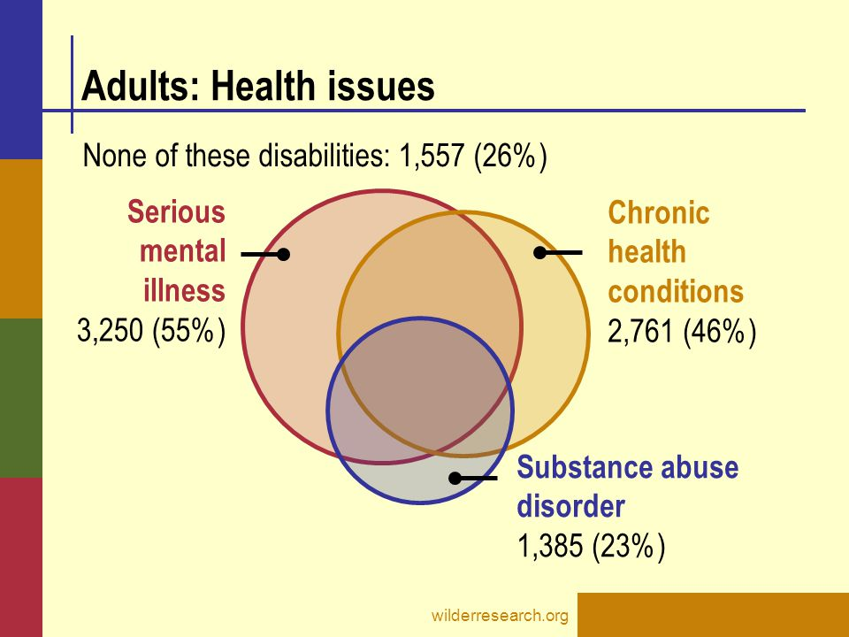 Adults: Health issues Serious mental illness 3,250 (55%) Chronic health conditions 2,761 (46%) Substance abuse disorder 1,385 (23%) None of these disabilities: 1,557 (26%) wilderresearch.org