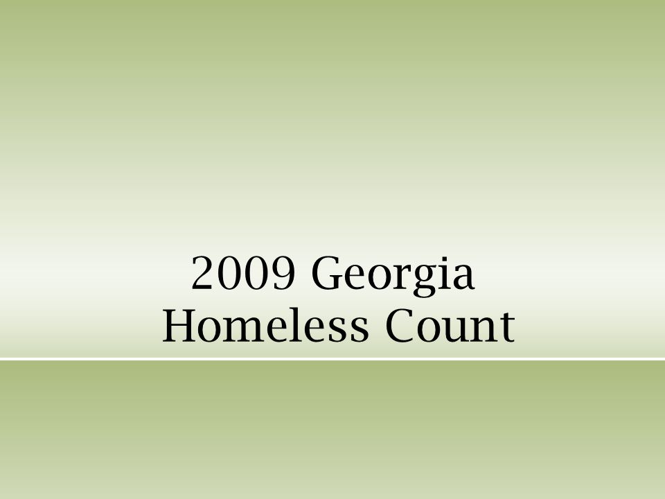 2009 Georgia Homeless Count
