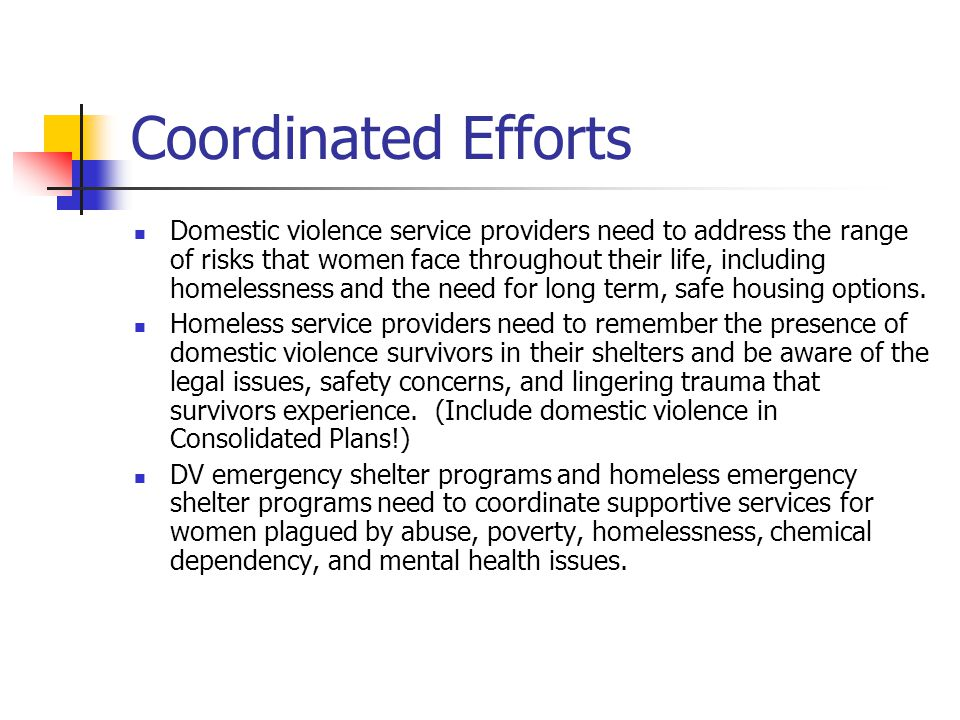 Coordinated Efforts Domestic violence service providers need to address the range of risks that women face throughout their life, including homelessness and the need for long term, safe housing options.