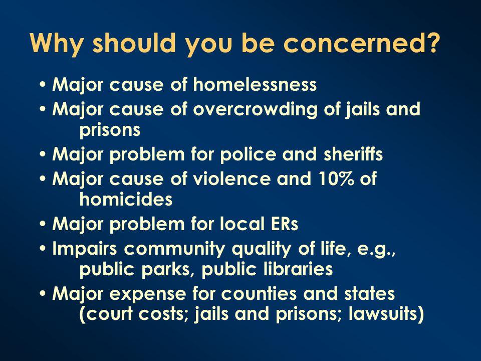 Homelessness A 2005 survey of the U.S.