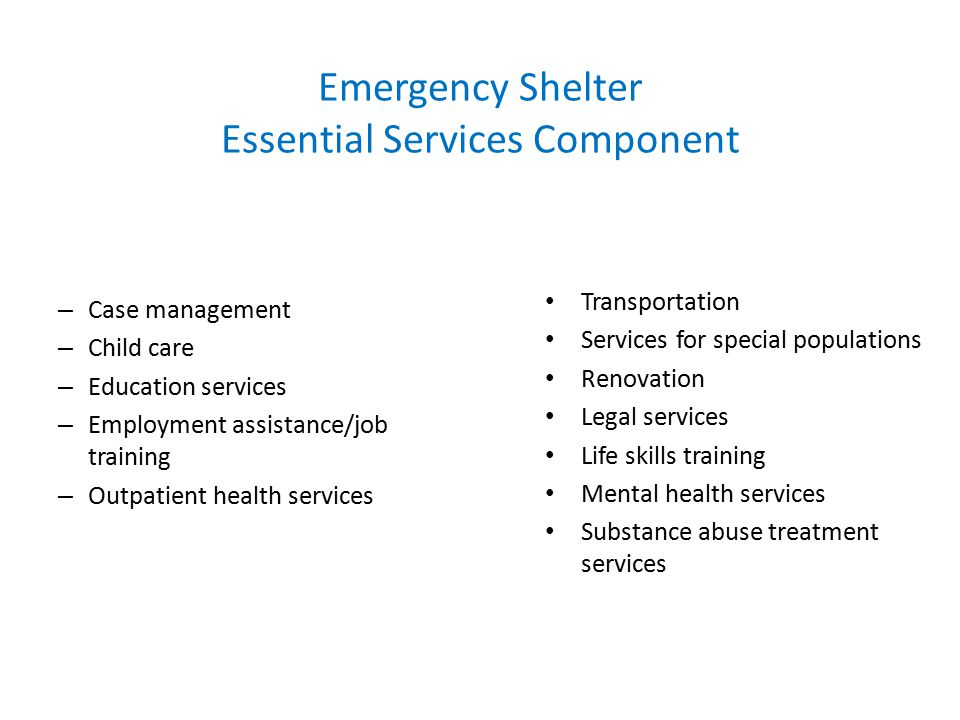 Emergency Shelter Essential Services Component Transportation Services for special populations Renovation Legal services Life skills training Mental health services Substance abuse treatment services – Case management – Child care – Education services – Employment assistance/job training – Outpatient health services