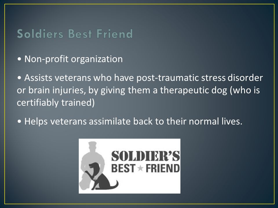 Non-profit organization Assists veterans who have post-traumatic stress disorder or brain injuries, by giving them a therapeutic dog (who is certifiably trained) Helps veterans assimilate back to their normal lives.