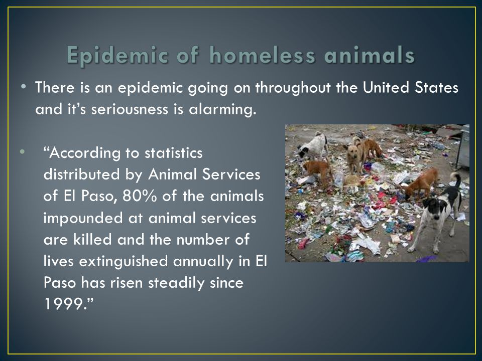 There is an epidemic going on throughout the United States and it's seriousness is alarming.