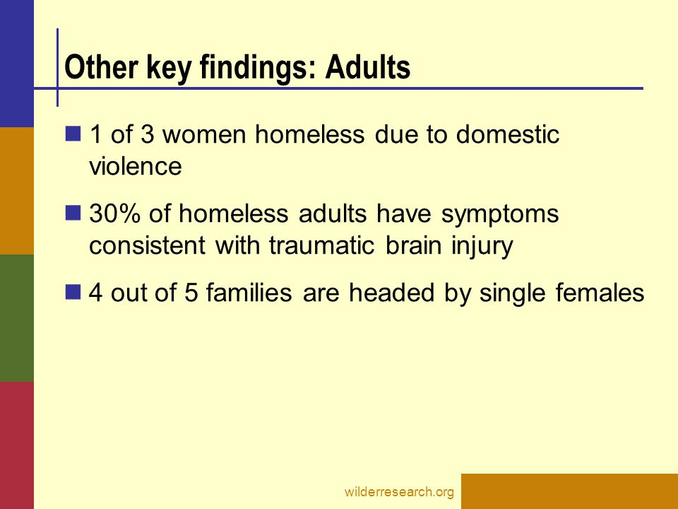 wilderresearch.org Other key findings: Adults 1 of 3 women homeless due to domestic violence 30% of homeless adults have symptoms consistent with traumatic brain injury 4 out of 5 families are headed by single females