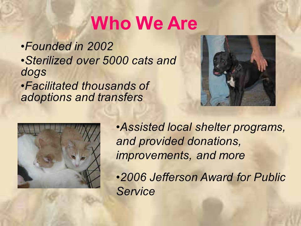 Founded in 2002 Sterilized over 5000 cats and dogs Facilitated thousands of adoptions and transfers Who We Are Assisted local shelter programs, and provided donations, improvements, and more 2006 Jefferson Award for Public Service