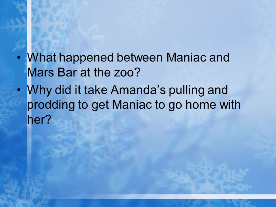 What happened between Maniac and Mars Bar at the zoo? Why did it take Amanda's pulling and prodding to get Maniac to go home with her?