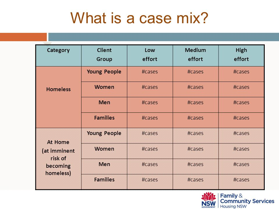 What is a case mix? CategoryClient Group Low effort Medium effort High effort Homeless Young People#cases Women#cases Men#cases Families#cases At Home