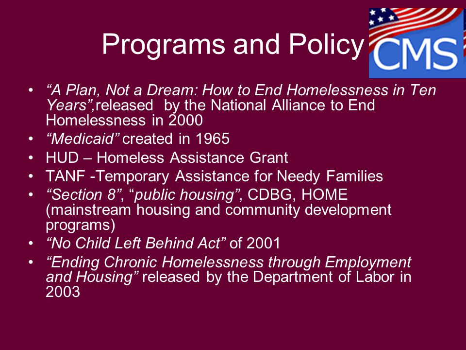 A Plan, Not a Dream: How to End Homelessness in Ten Years ,released by the National Alliance to End Homelessness in 2000 Medicaid created in 1965 HUD – Homeless Assistance Grant TANF -Temporary Assistance for Needy Families Section 8 , public housing , CDBG, HOME (mainstream housing and community development programs) No Child Left Behind Act of 2001 Ending Chronic Homelessness through Employment and Housing released by the Department of Labor in 2003