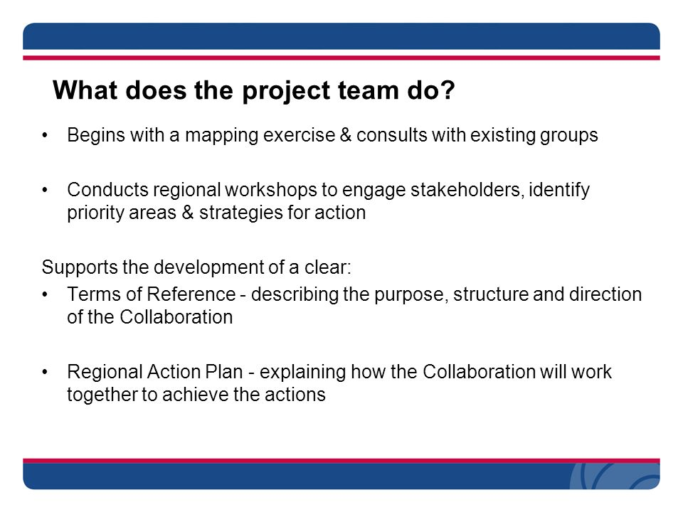 What does the project team do.