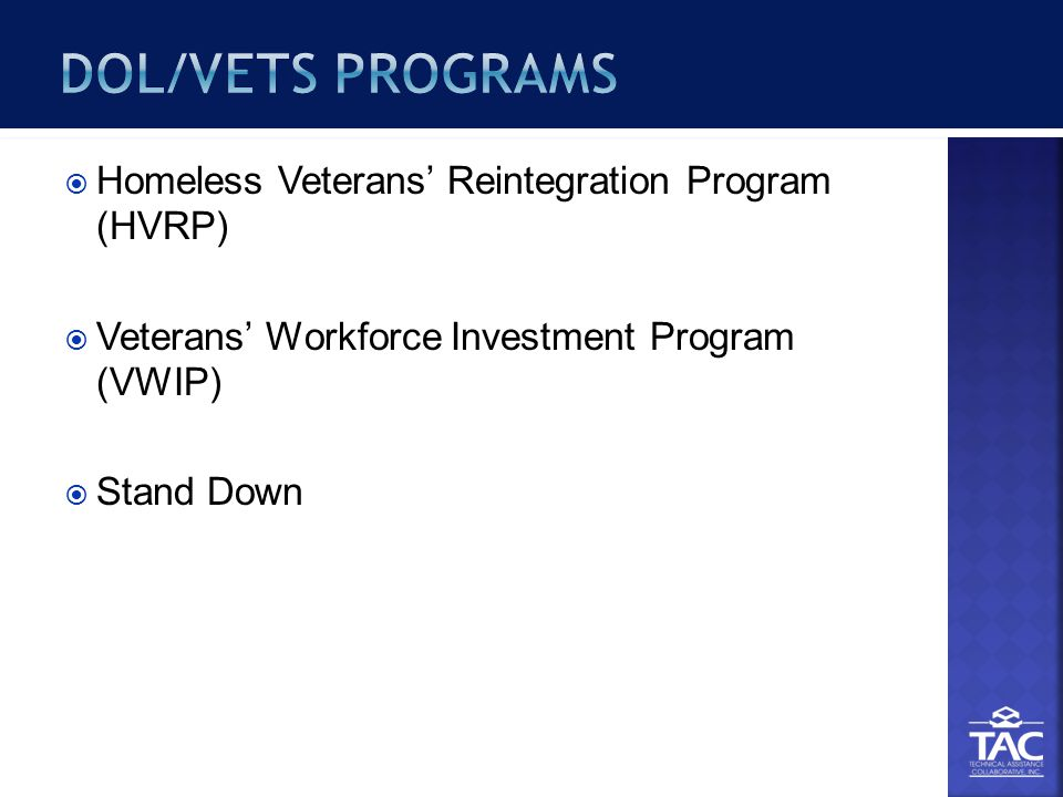  Homeless Veterans' Reintegration Program (HVRP)  Veterans' Workforce Investment Program (VWIP)  Stand Down