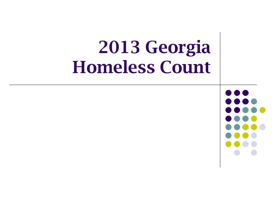 2013 Georgia Homeless Count