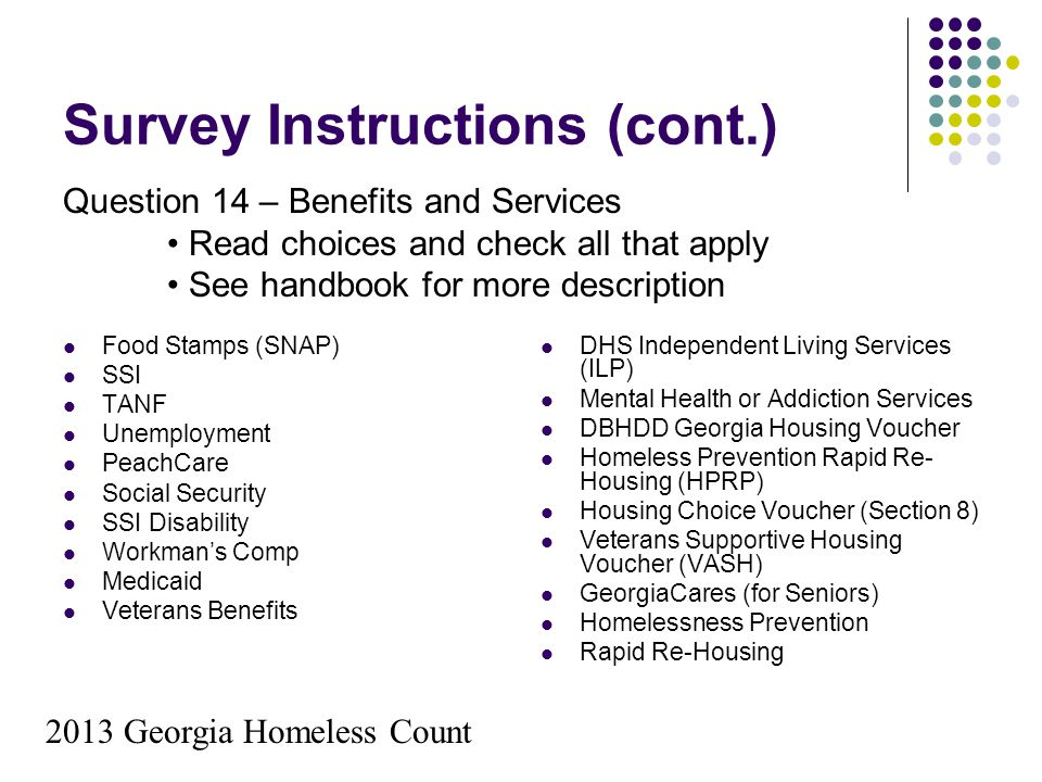 Survey Instructions (cont.) Food Stamps (SNAP) SSI TANF Unemployment PeachCare Social Security SSI Disability Workman's Comp Medicaid Veterans Benefit