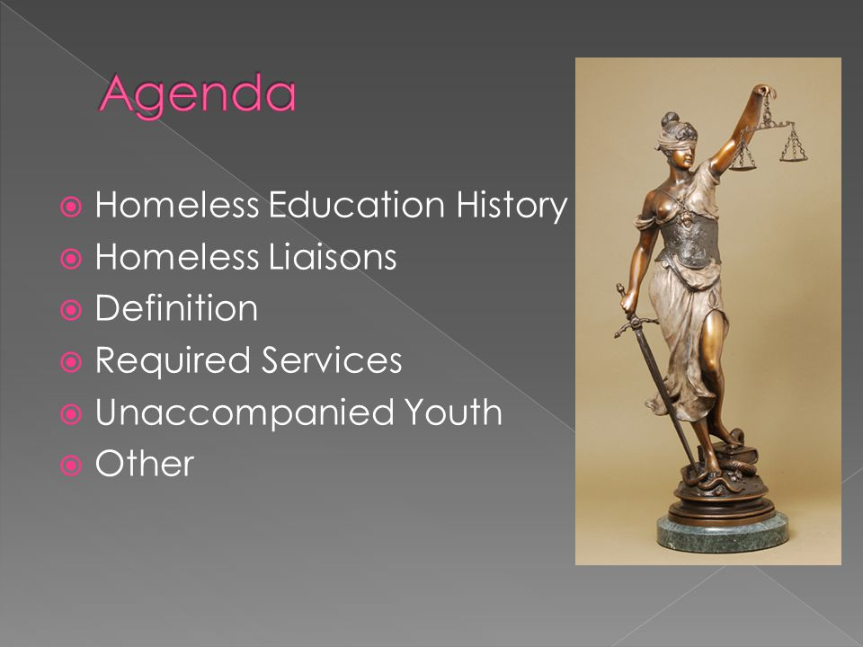  Homeless Education History  Homeless Liaisons  Definition  Required Services  Unaccompanied Youth  Other