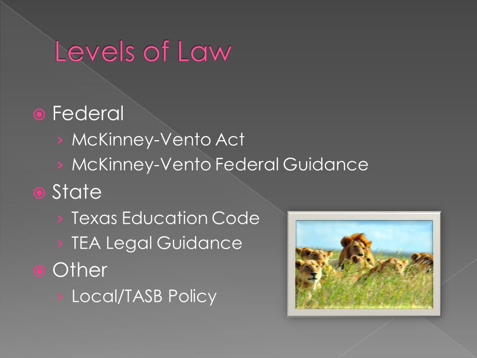  Federal › McKinney-Vento Act › McKinney-Vento Federal Guidance  State › Texas Education Code › TEA Legal Guidance  Other › Local/TASB Policy