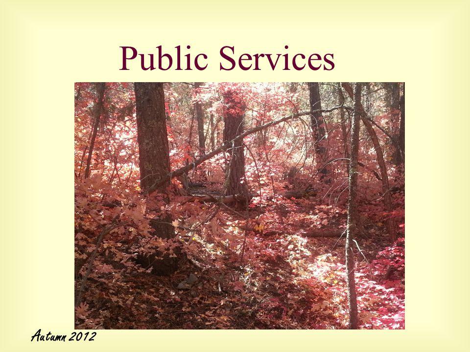 Public Services Autumn 2012