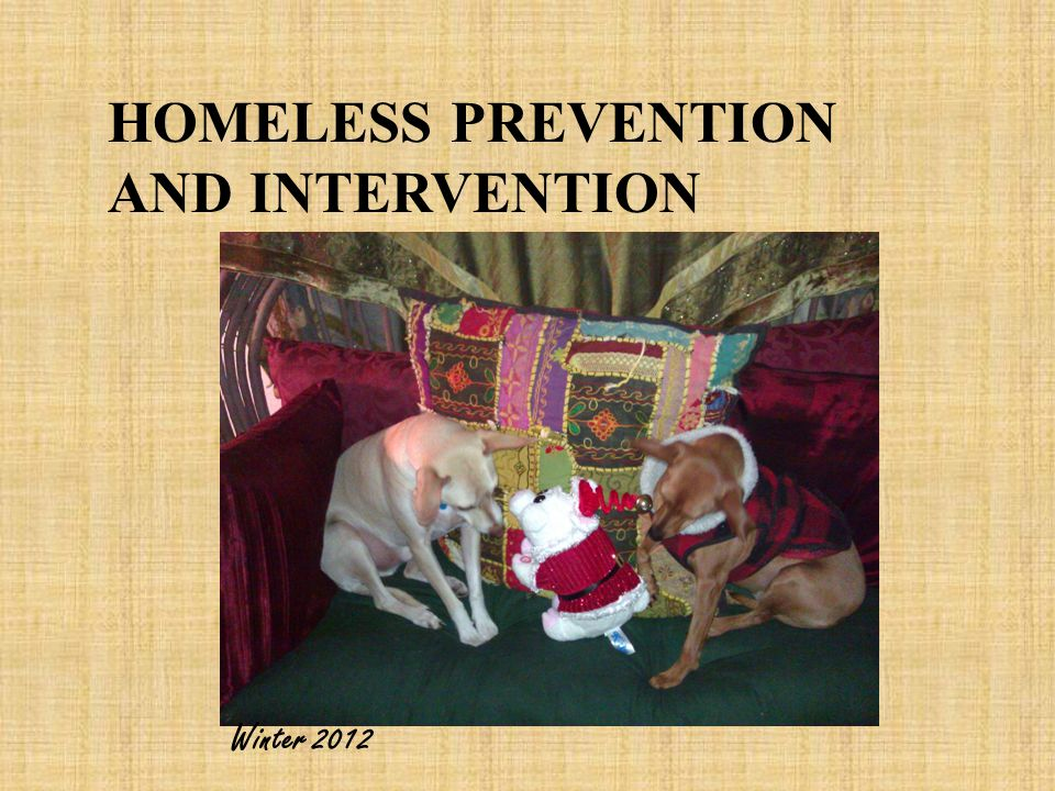 HOMELESS PREVENTION AND INTERVENTION Winter 2012