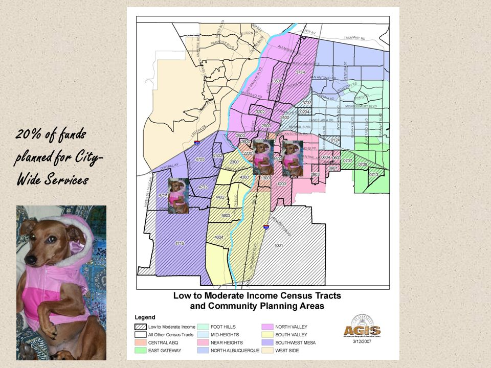 20% of funds planned for City- Wide Services